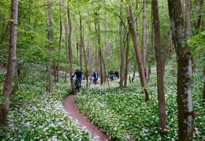 Biken in Schweinfurt