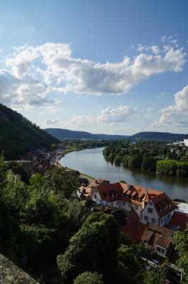 Miltenberg von der Burg