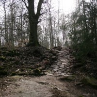 Keltentrail (1)