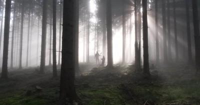 Trailbauer im Nebel